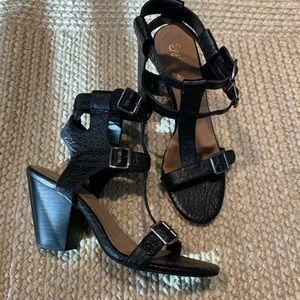 Seychelles Buckle Block Heel Shoes black leather 9